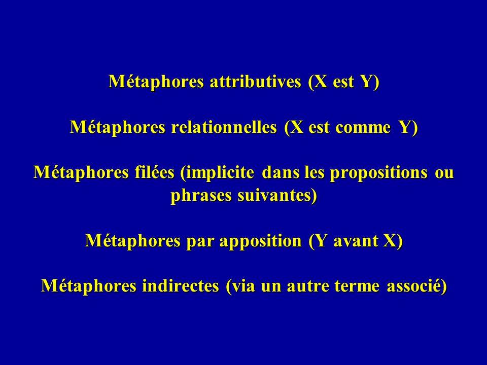 Métaphores attributives (X est Y) Métaphores relationnelles (X est comme Y) Métaphores filées (implicite dans les propositions ou phrases suivantes) Métaphores par apposition (Y avant X) Métaphores indirectes (via un autre terme associé)