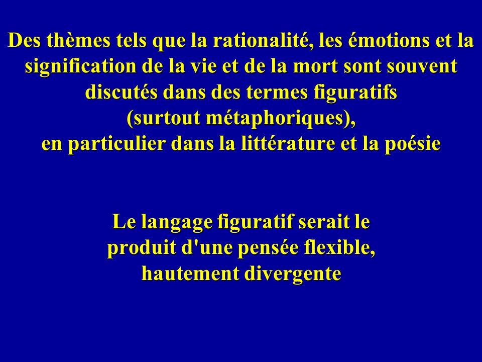 Des thèmes tels que la rationalité, les émotions et la signification de la vie et de la mort sont souvent discutés dans des termes figuratifs (surtout métaphoriques), en particulier dans la littérature et la poésie