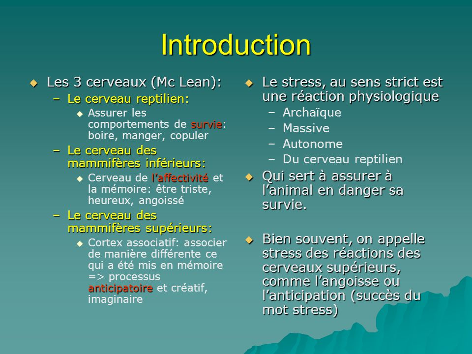 Introduction Les 3 cerveaux (Mc Lean):