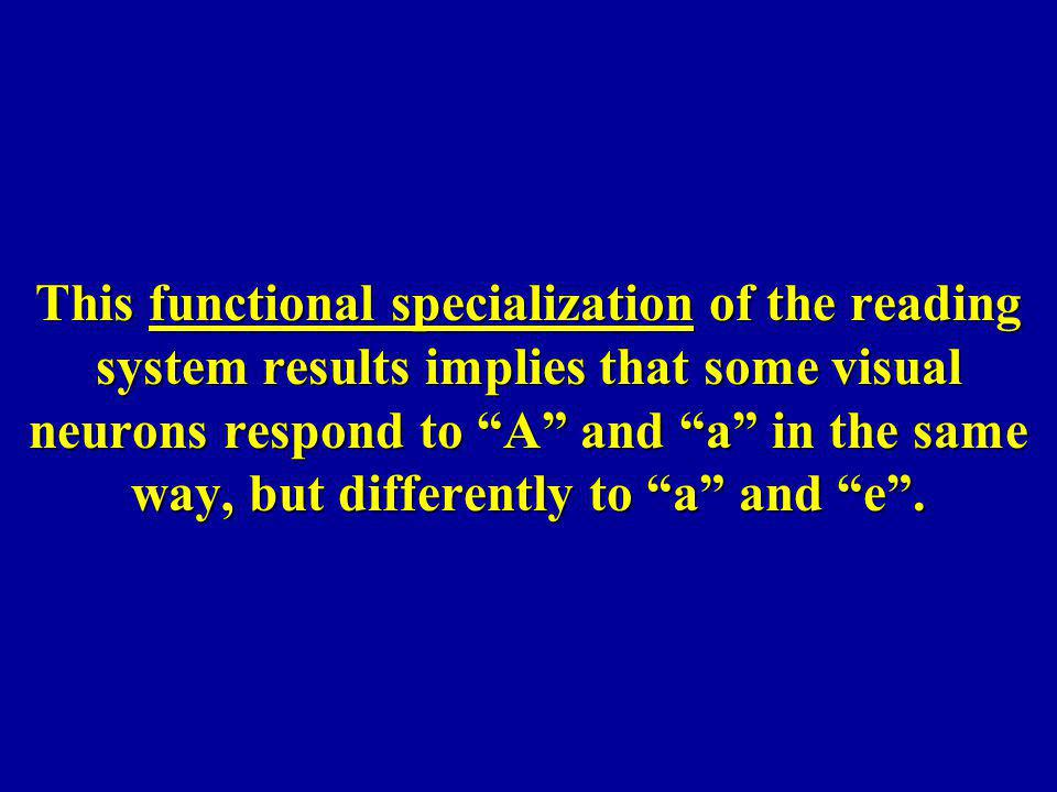 This functional specialization of the reading system results implies that some visual neurons respond to A and a in the same way, but differently to a and e .