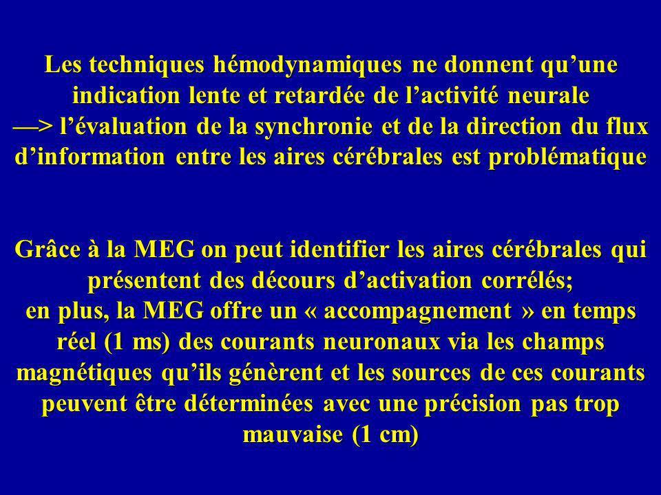 Les techniques hémodynamiques ne donnent qu'une indication lente et retardée de l'activité neurale —> l'évaluation de la synchronie et de la direction du flux d'information entre les aires cérébrales est problématique Grâce à la MEG on peut identifier les aires cérébrales qui présentent des décours d'activation corrélés; en plus, la MEG offre un « accompagnement » en temps réel (1 ms) des courants neuronaux via les champs magnétiques qu'ils génèrent et les sources de ces courants peuvent être déterminées avec une précision pas trop mauvaise (1 cm)