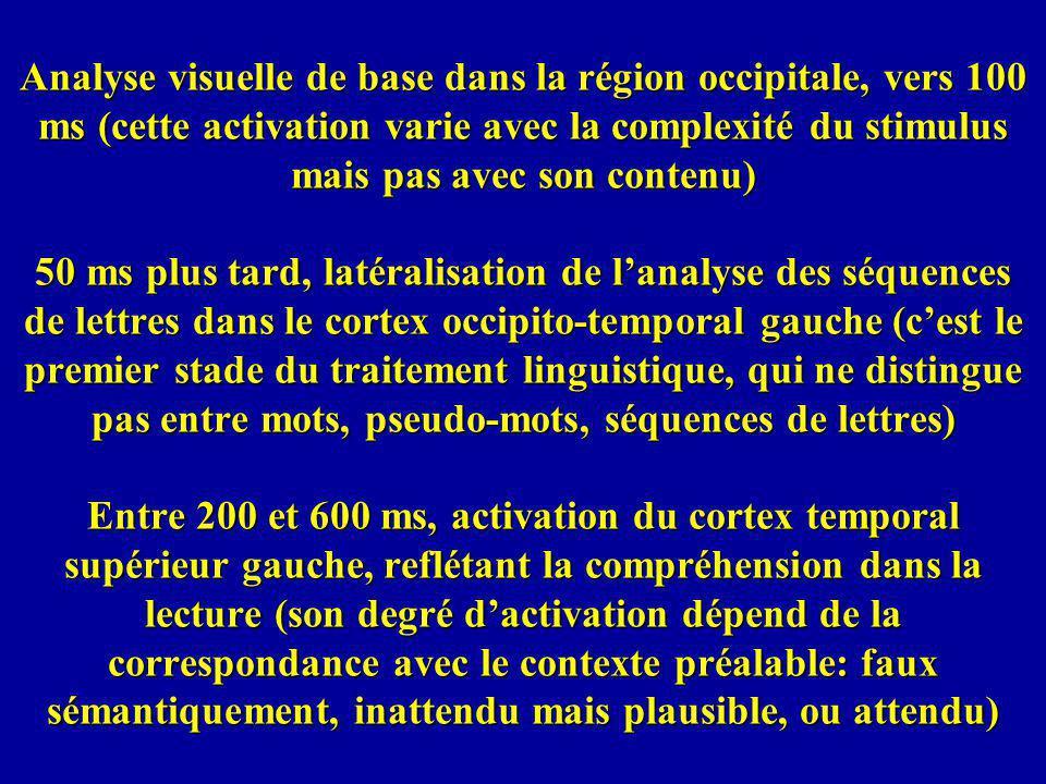 Analyse visuelle de base dans la région occipitale, vers 100 ms (cette activation varie avec la complexité du stimulus mais pas avec son contenu) 50 ms plus tard, latéralisation de l'analyse des séquences de lettres dans le cortex occipito-temporal gauche (c'est le premier stade du traitement linguistique, qui ne distingue pas entre mots, pseudo-mots, séquences de lettres) Entre 200 et 600 ms, activation du cortex temporal supérieur gauche, reflétant la compréhension dans la lecture (son degré d'activation dépend de la correspondance avec le contexte préalable: faux sémantiquement, inattendu mais plausible, ou attendu)
