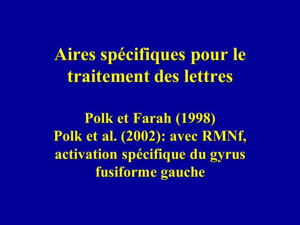 Aires spécifiques pour le traitement des lettres Polk et Farah (1998) Polk et al.
