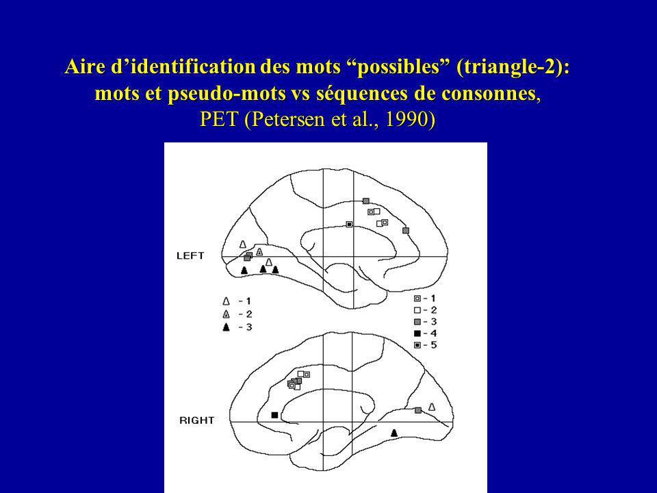 Aire d'identification des mots possibles (triangle-2): mots et pseudo-mots vs séquences de consonnes, PET (Petersen et al., 1990)