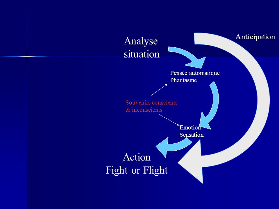 Analyse situation Action Fight or Flight Anticipation