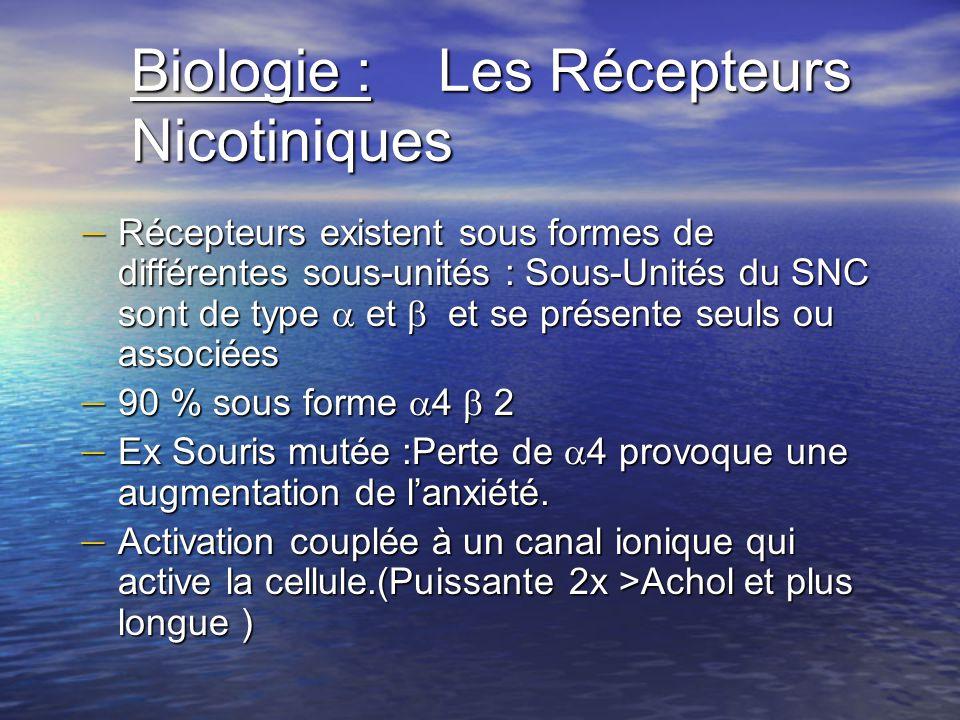 Biologie : Les Récepteurs Nicotiniques