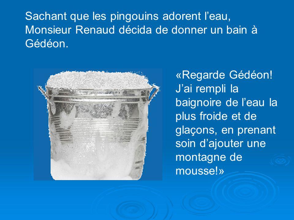Sachant que les pingouins adorent l'eau, Monsieur Renaud décida de donner un bain à Gédéon.