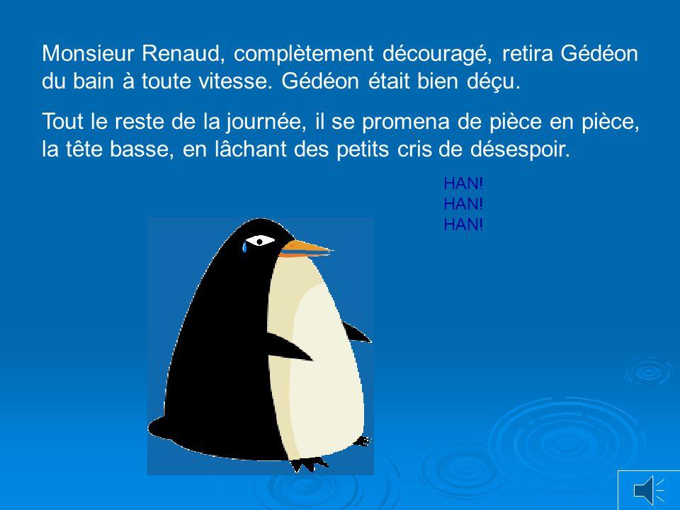 Monsieur Renaud, complètement découragé, retira Gédéon du bain à toute vitesse. Gédéon était bien déçu.