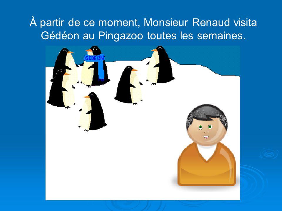 À partir de ce moment, Monsieur Renaud visita Gédéon au Pingazoo toutes les semaines.