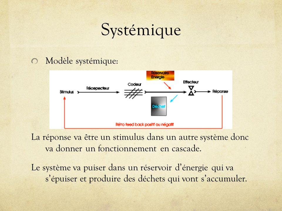 Systémique Modèle systémique: