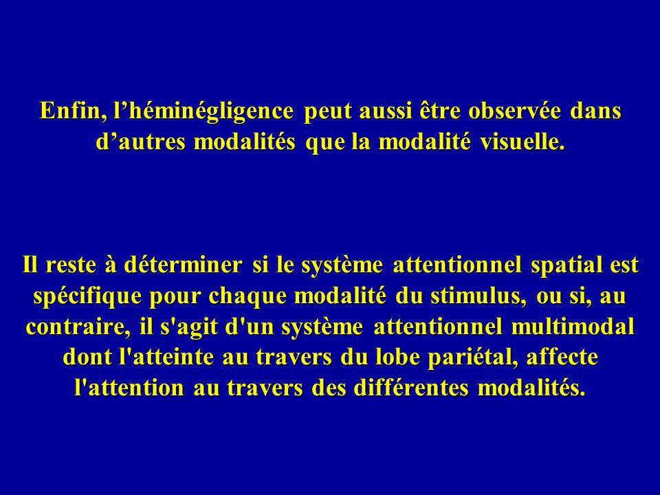Enfin, l'héminégligence peut aussi être observée dans d'autres modalités que la modalité visuelle.
