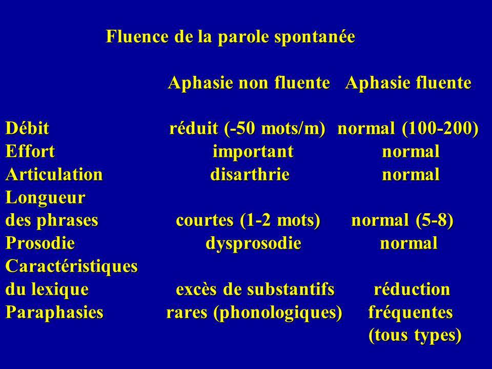 Fluence de la parole spontanée Aphasie non fluente Aphasie fluente Débit réduit (-50 mots/m) normal (100-200) Effort important normal Articulation disarthrie normal Longueur des phrases courtes (1-2 mots) normal (5-8) Prosodie dysprosodie normal Caractéristiques du lexique excès de substantifs réduction Paraphasies rares (phonologiques) fréquentes (tous types)