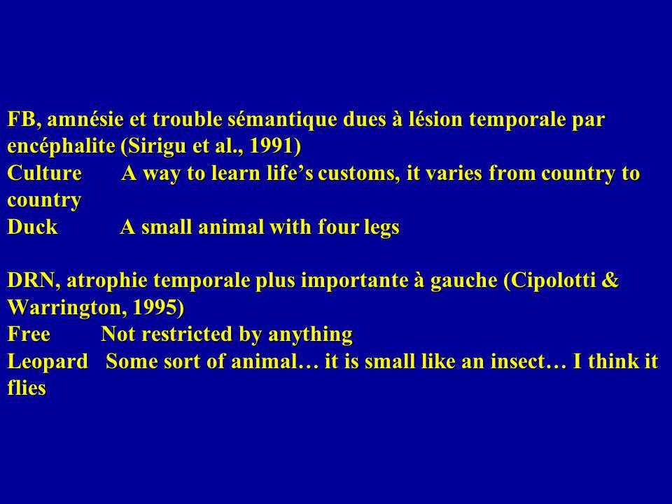 FB, amnésie et trouble sémantique dues à lésion temporale par encéphalite (Sirigu et al., 1991) Culture A way to learn life's customs, it varies from country to country Duck A small animal with four legs DRN, atrophie temporale plus importante à gauche (Cipolotti & Warrington, 1995) Free Not restricted by anything Leopard Some sort of animal… it is small like an insect… I think it flies