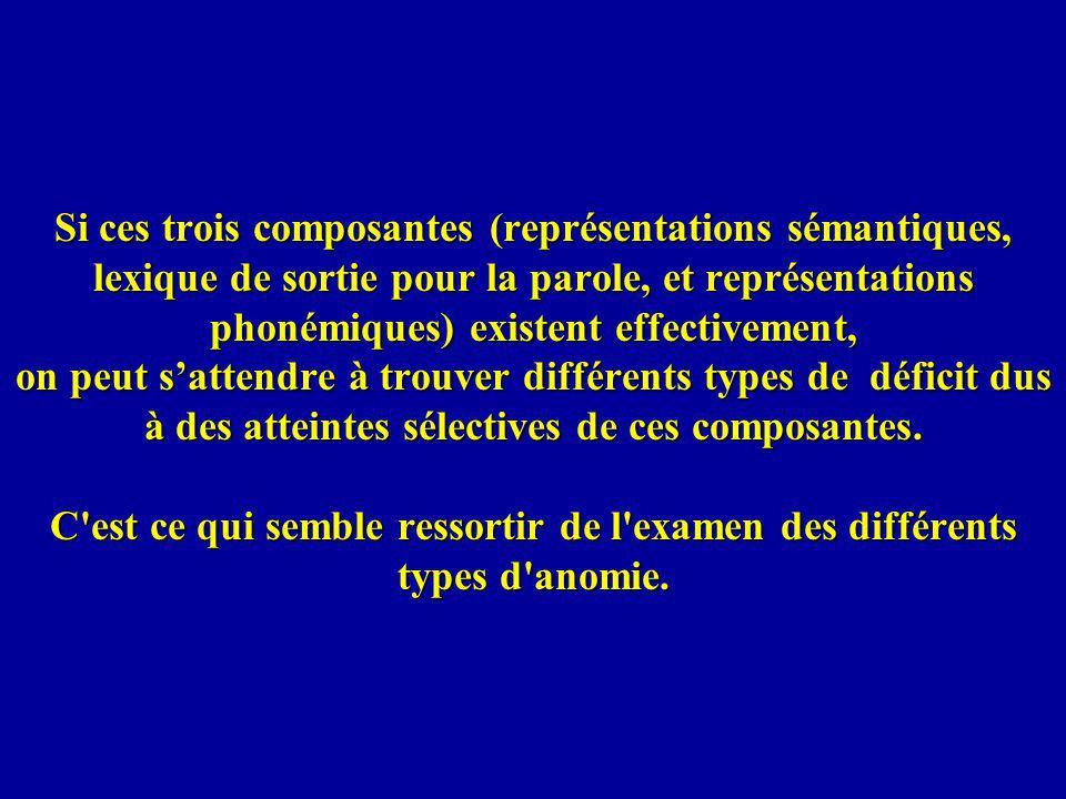 Si ces trois composantes (représentations sémantiques, lexique de sortie pour la parole, et représentations phonémiques) existent effectivement, on peut s'attendre à trouver différents types de déficit dus à des atteintes sélectives de ces composantes.