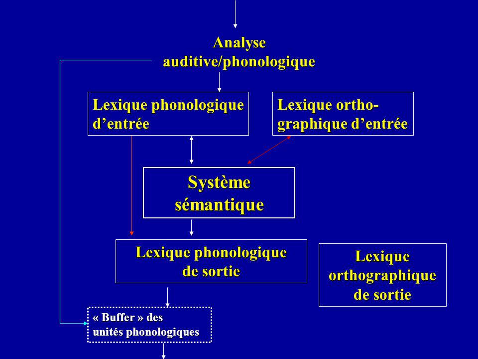 Analyse auditive/phonologique