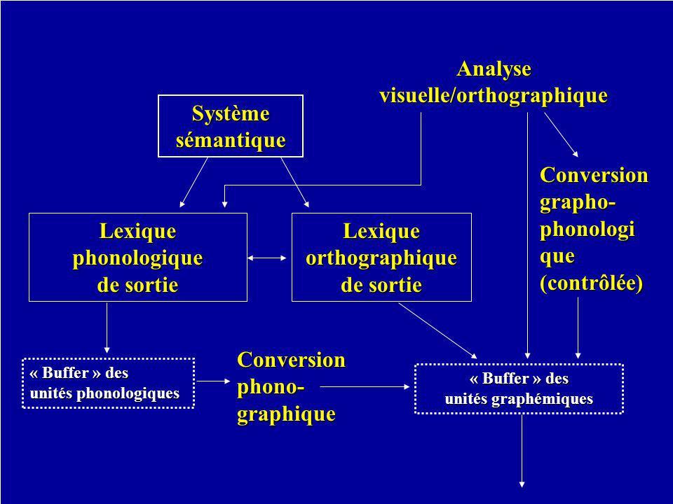 visuelle/orthographique Lexique orthographique