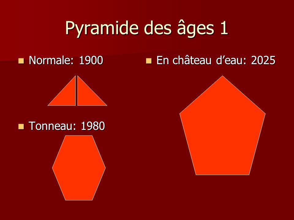 Pyramide des âges 1 Normale: 1900 Tonneau: 1980 En château d'eau: 2025