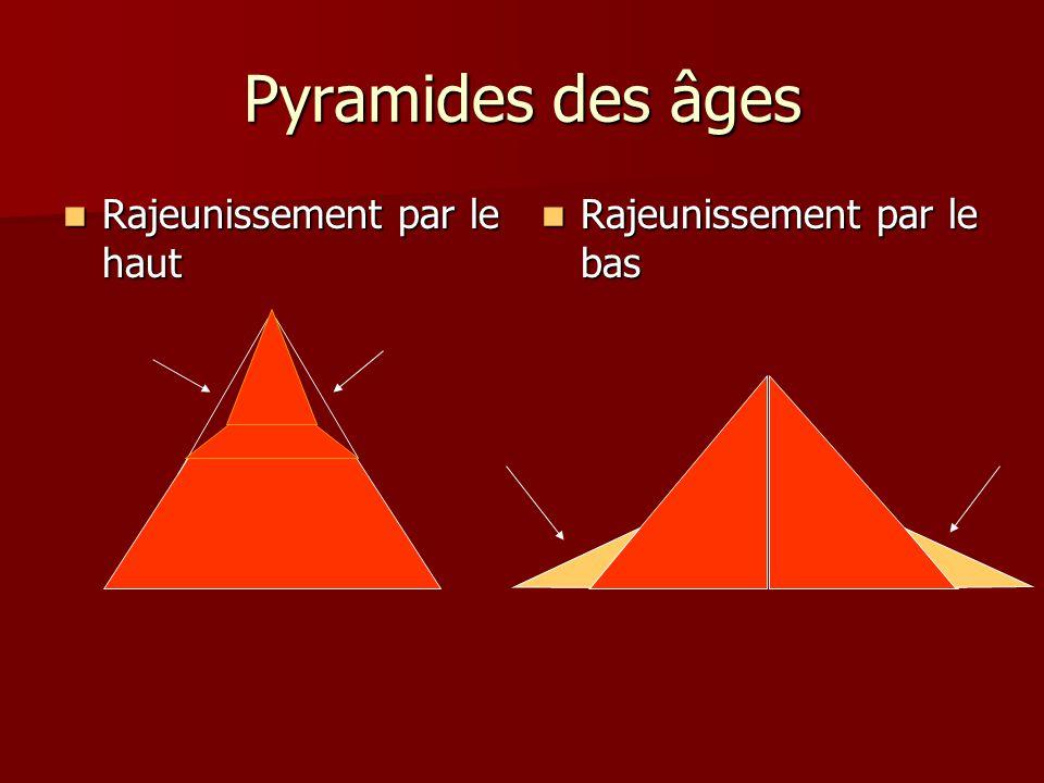 Pyramides des âges Rajeunissement par le haut