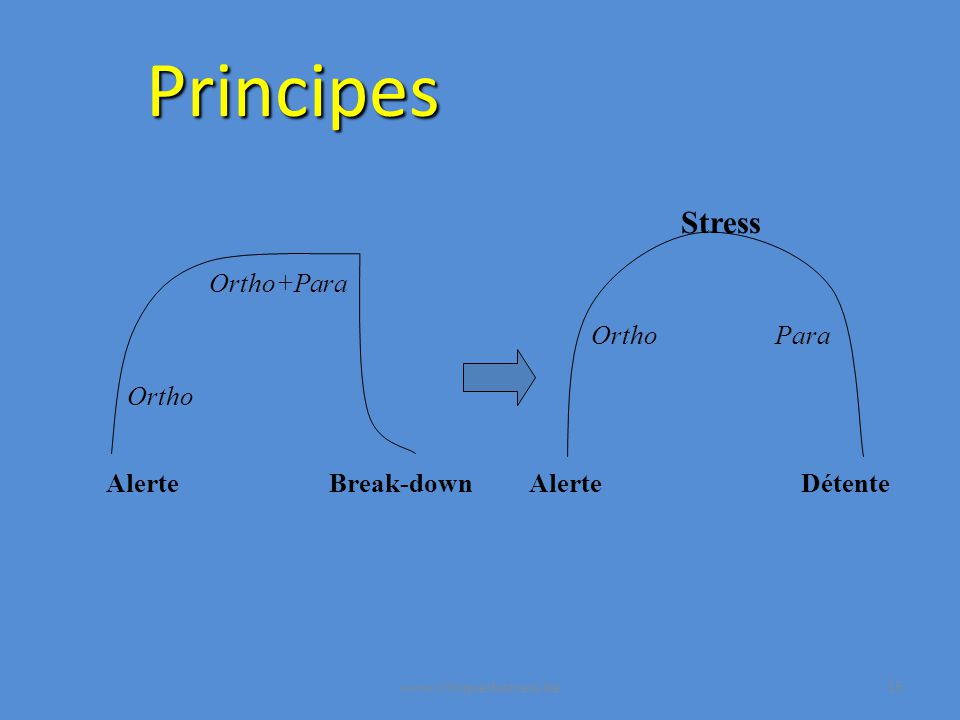 Principes Stress Ortho+Para Ortho Para Ortho Alerte Break-down Alerte