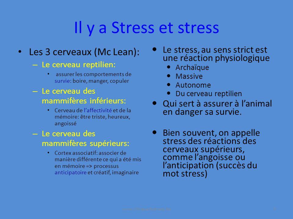 Il y a Stress et stress Les 3 cerveaux (Mc Lean):