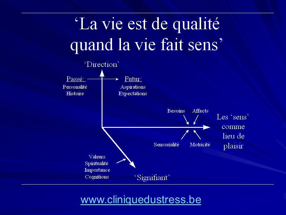 www.cliniquedustress.be