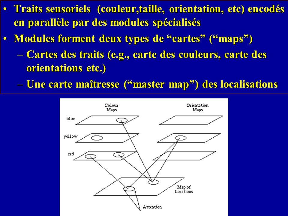 Traits sensoriels (couleur,taille, orientation, etc) encodés en parallèle par des modules spécialisés