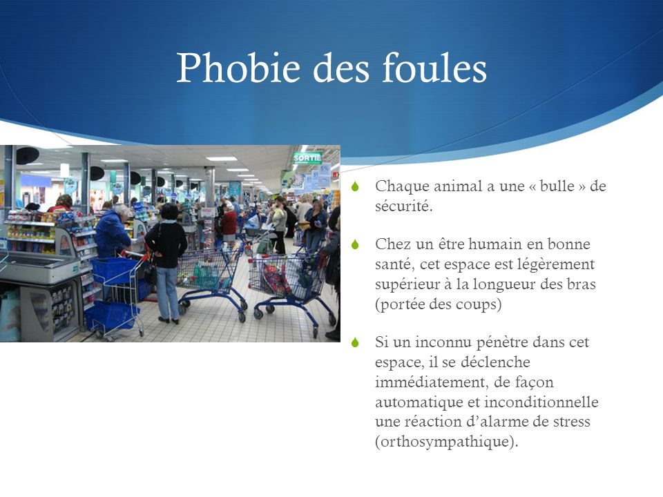Phobie des foules Chaque animal a une « bulle » de sécurité.