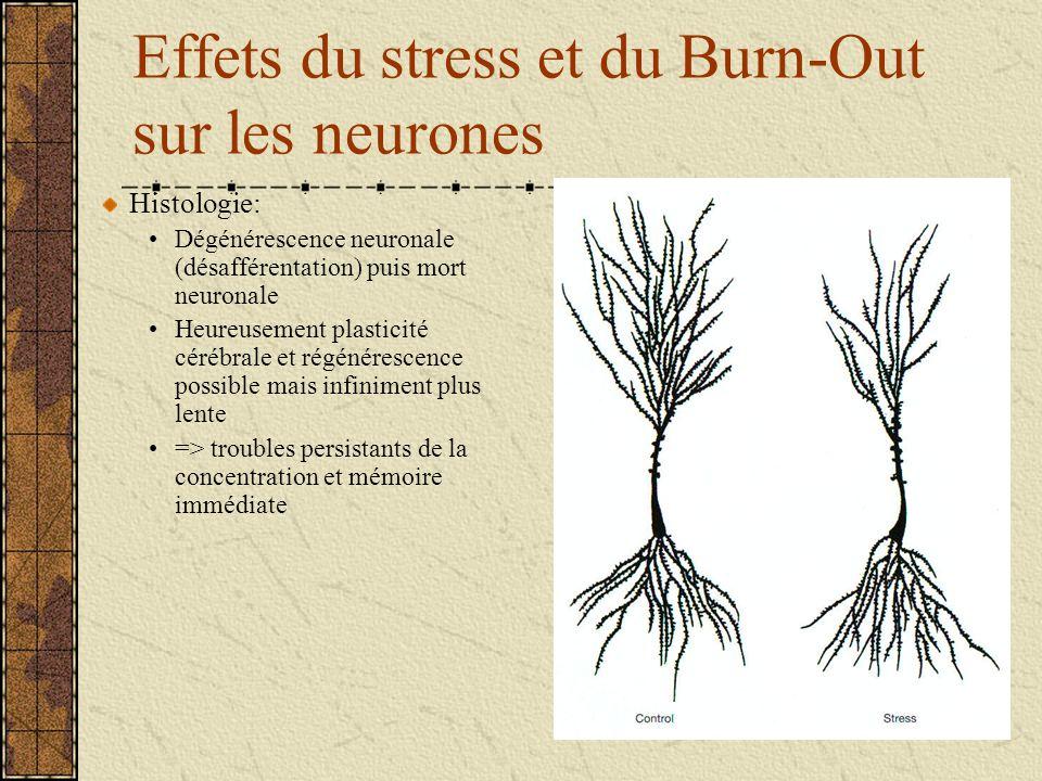 Effets du stress et du Burn-Out sur les neurones