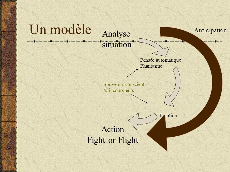 Un modèle Analyse situation Action Fight or Flight Anticipation