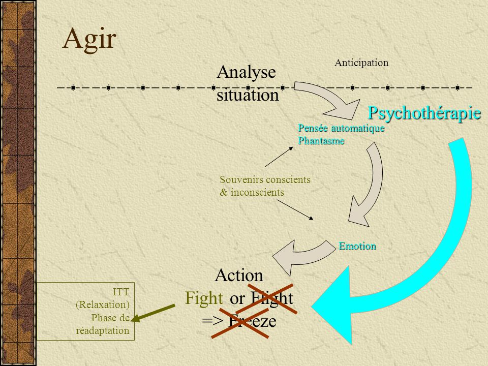 Agir Analyse situation Psychothérapie Action Fight or Flight