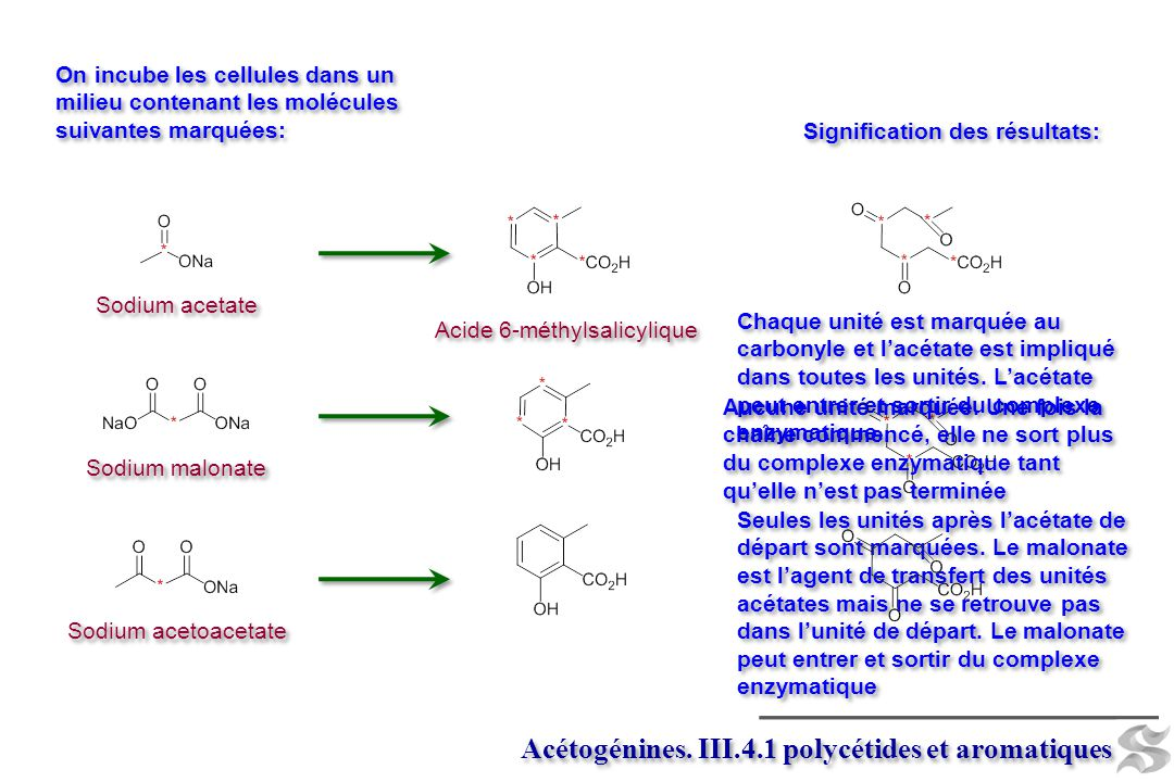 Acétogénines. III.4.1 polycétides et aromatiques