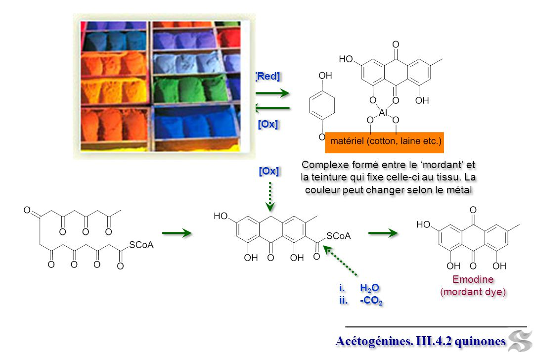 Acétogénines. III.4.2 quinones
