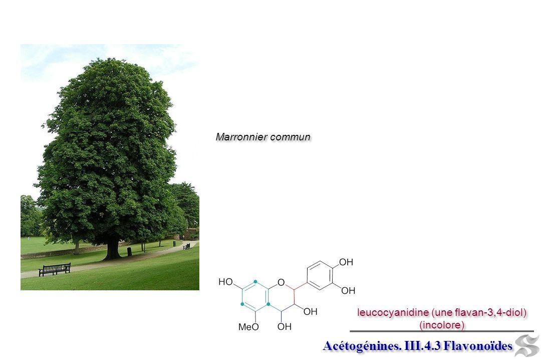 leucocyanidine (une flavan-3,4-diol)