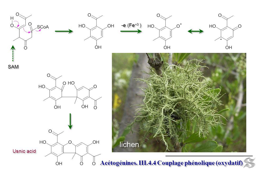 lichen Acétogénines. III.4.4 Couplage phénolique (oxydatif) -e (Fe+3 )
