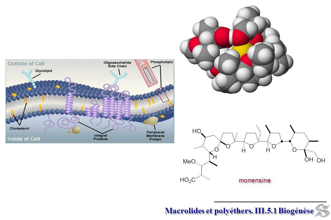 Macrolides et polyéthers. III.5.1 Biogénèse