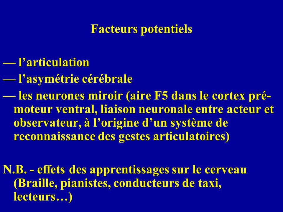 Facteurs potentiels — l'articulation. — l'asymétrie cérébrale.
