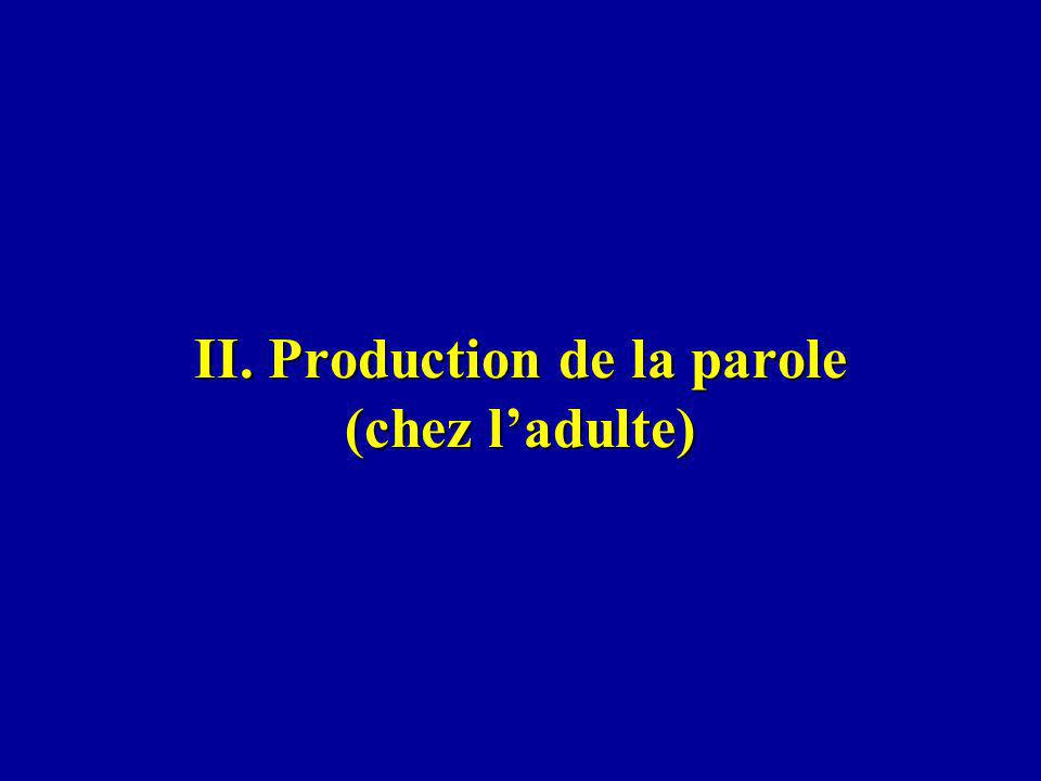 II. Production de la parole (chez l'adulte)