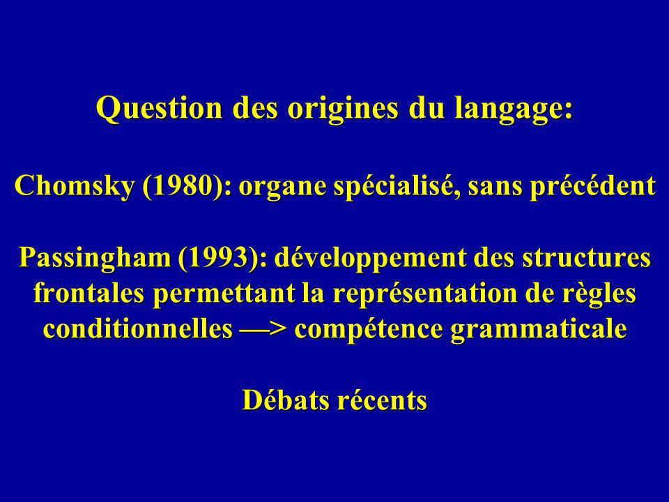 Question des origines du langage: Chomsky (1980): organe spécialisé, sans précédent Passingham (1993): développement des structures frontales permettant la représentation de règles conditionnelles —> compétence grammaticale Débats récents