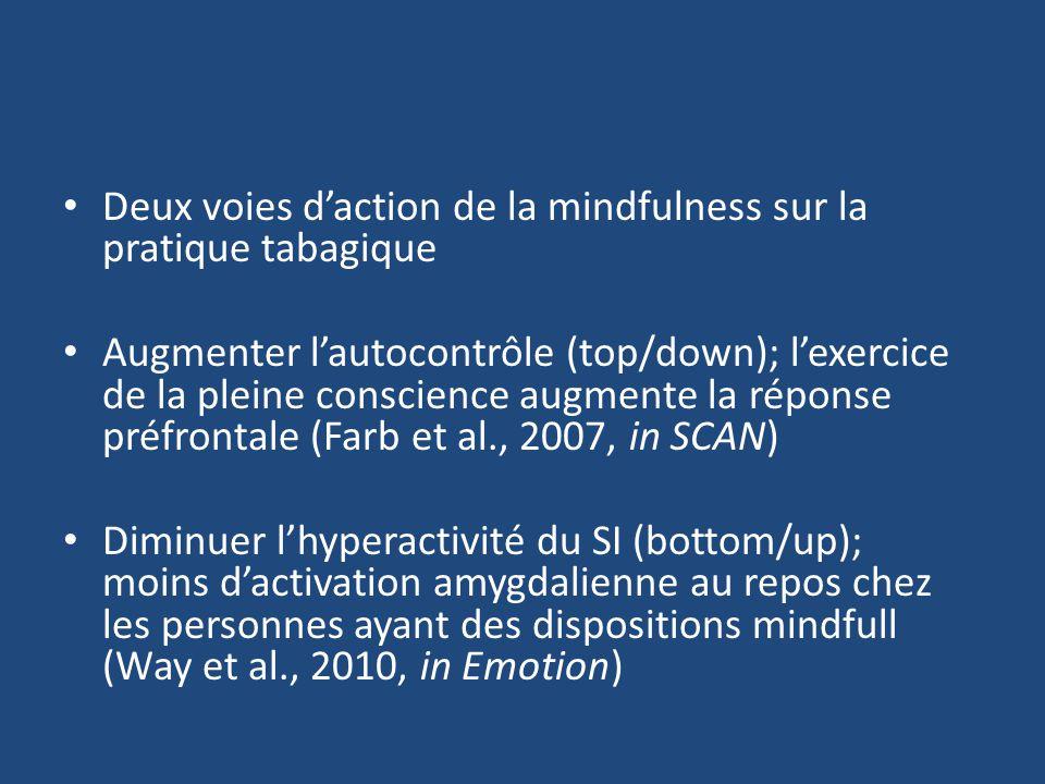 Deux voies d'action de la mindfulness sur la pratique tabagique