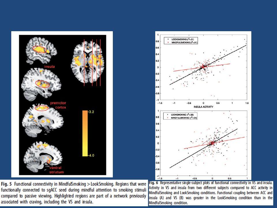 Westbrook et al., 2011, in SCAN