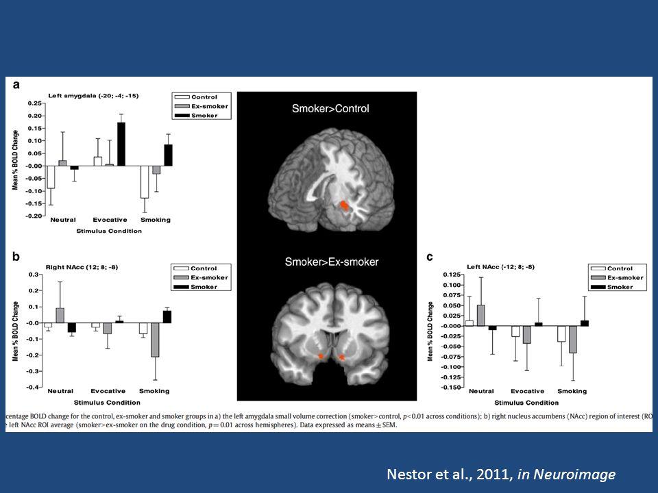 Nestor et al., 2011, in Neuroimage