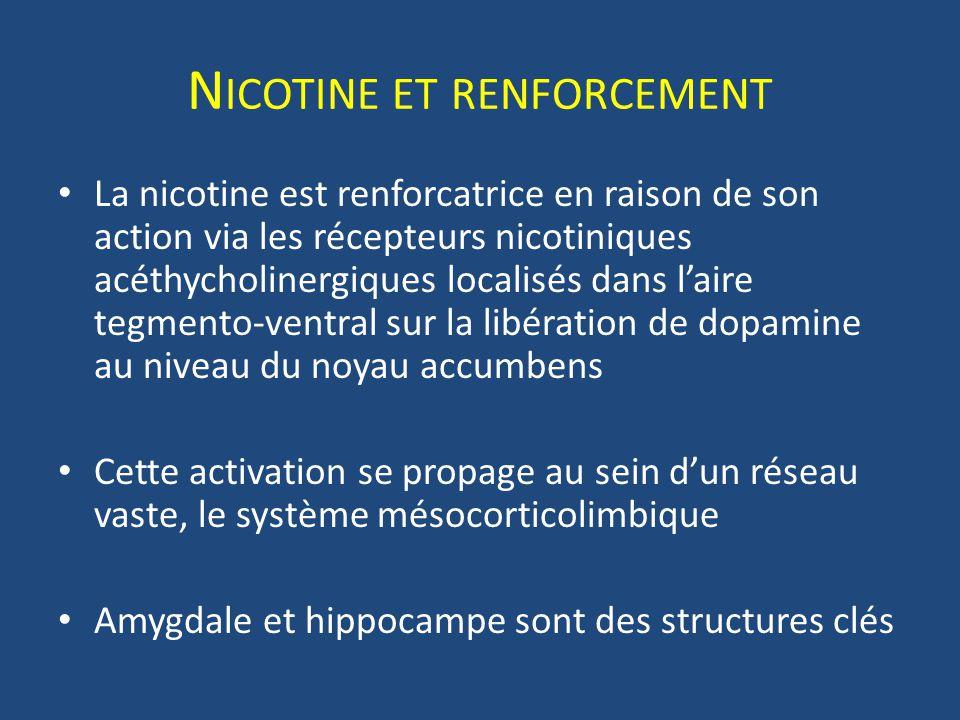Nicotine et renforcement
