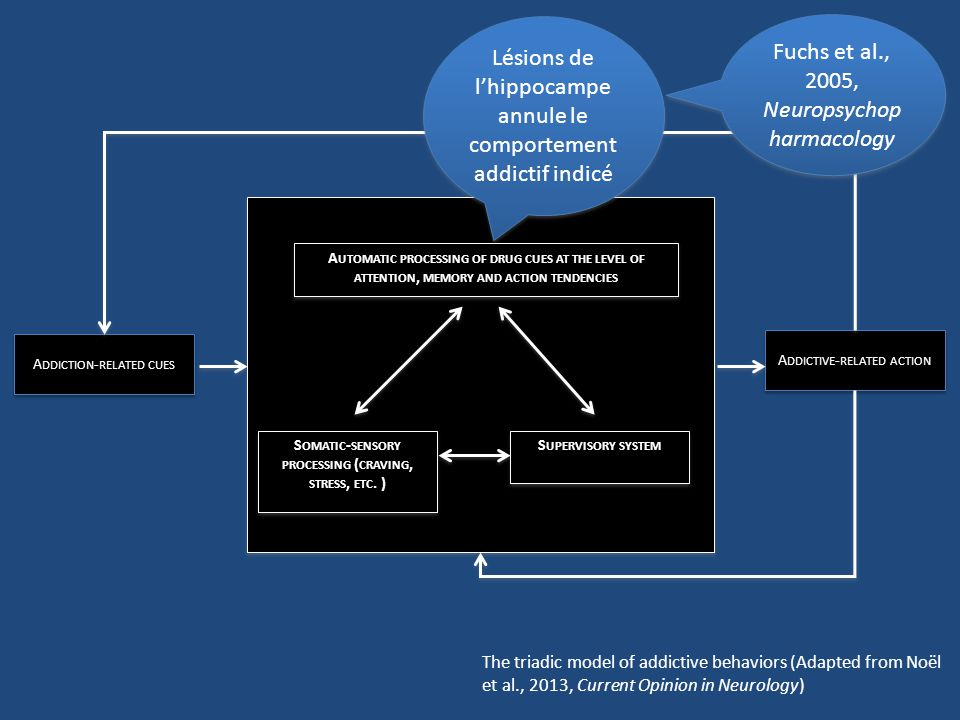 Somatic-sensory processing (craving, stress, etc. )