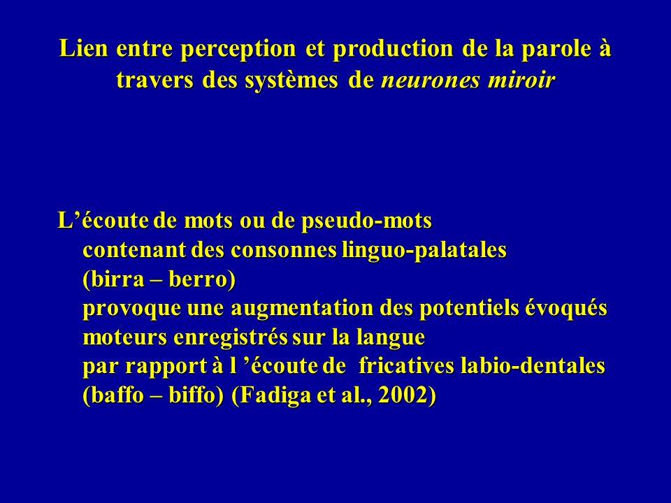 Lien entre perception et production de la parole à travers des systèmes de neurones miroir