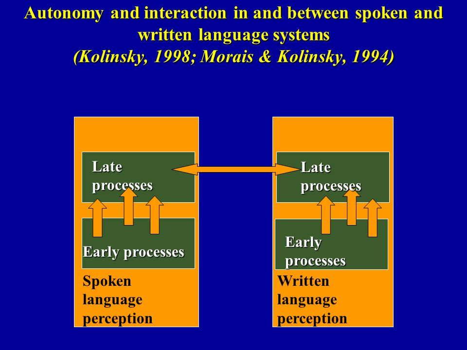 Autonomy and interaction in and between spoken and written language systems (Kolinsky, 1998; Morais & Kolinsky, 1994)
