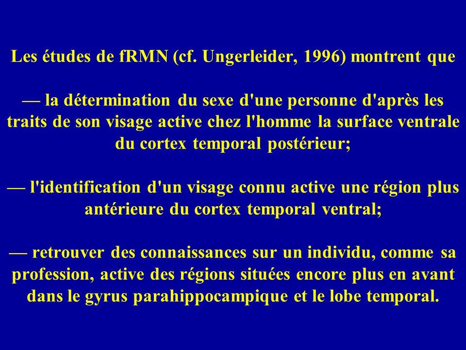 Les études de fRMN (cf.