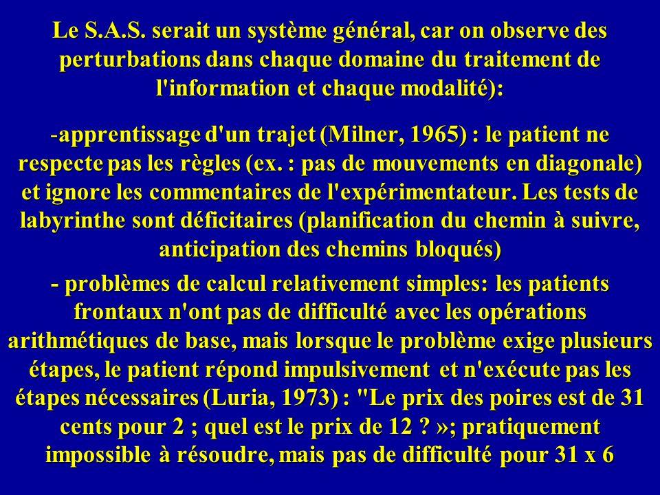 Le S.A.S. serait un système général, car on observe des perturbations dans chaque domaine du traitement de l information et chaque modalité):