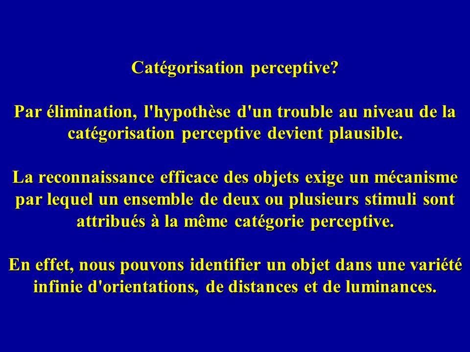 Catégorisation perceptive