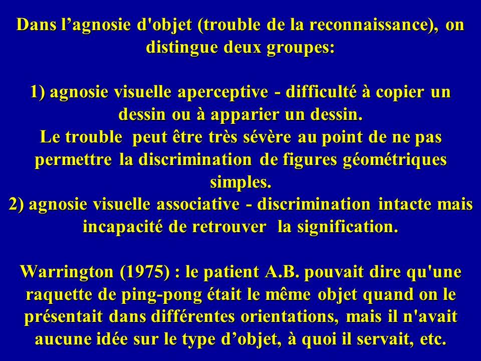 Dans l'agnosie d objet (trouble de la reconnaissance), on distingue deux groupes: 1) agnosie visuelle aperceptive - difficulté à copier un dessin ou à apparier un dessin.