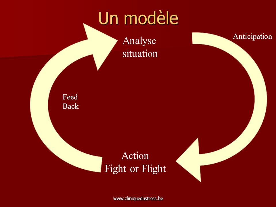 Un modèle Analyse situation Action Fight or Flight Anticipation Feed